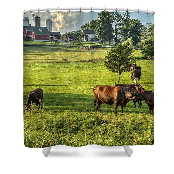 Summer on the farm Shower Curtain by Bill  Wakeley