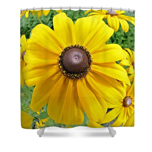 Summers Bloom Shower Curtain by Susan Leggett