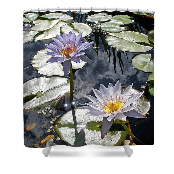 Sun-drenched Lily Pond Shower Curtain by Kaye Menner