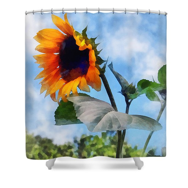 Sunflower Against the Sky Shower Curtain by Susan Savad
