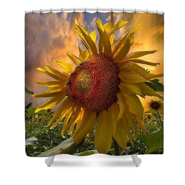 Sunflower Dawn Shower Curtain by Debra and Dave Vanderlaan