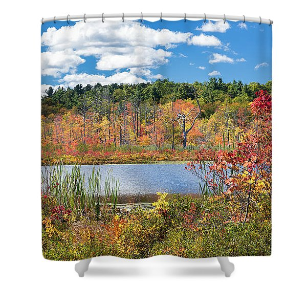 Sunny Fall Day Shower Curtain by Bill  Wakeley