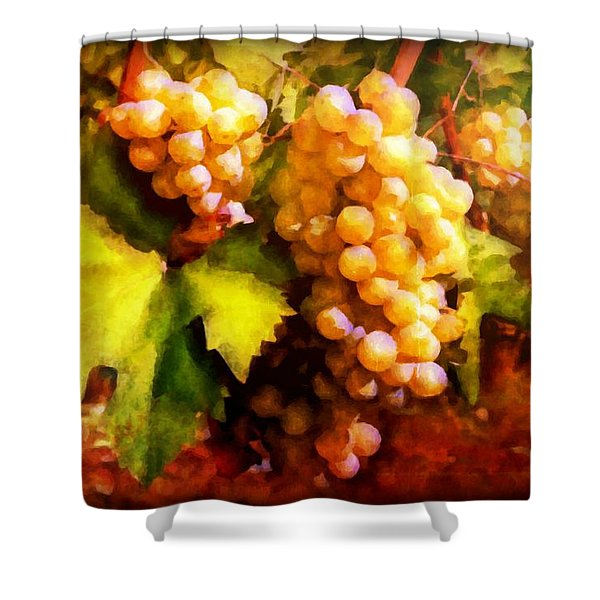 Sunny Grapes - edition 2 Shower Curtain by Lilia D