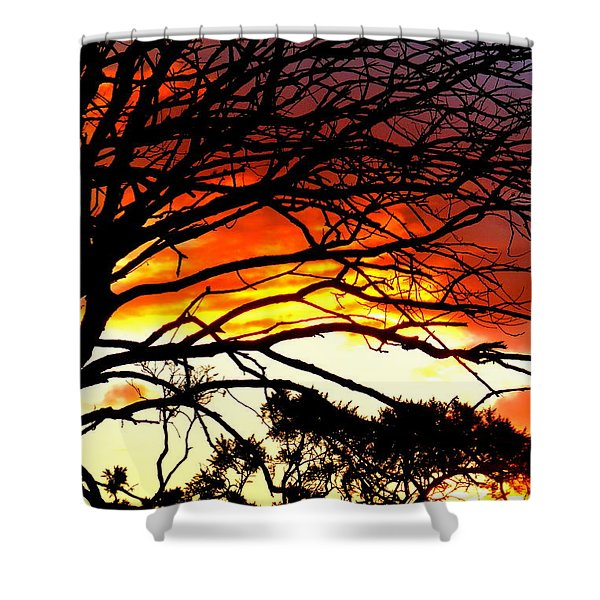 Sunset Tree Silhouette Shower Curtain by The Creative Minds Art and Photography