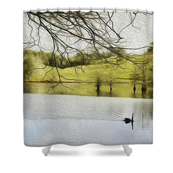 Swan lake Shower Curtain by Les Cunliffe