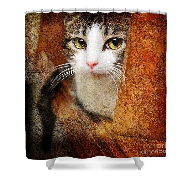 Sweet Innocence Shower Curtain by Andee Design