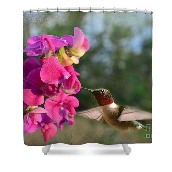 Sweet Pea Hummingbird Shower Curtain by Debbie Portwood