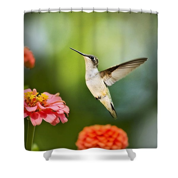Sweet Promise Hummingbird Shower Curtain by Christina Rollo