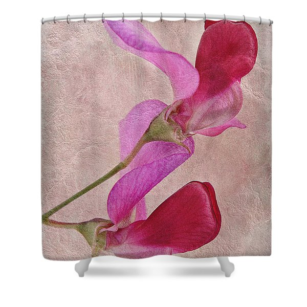 Sweet Textures 2 Shower Curtain by John Edwards