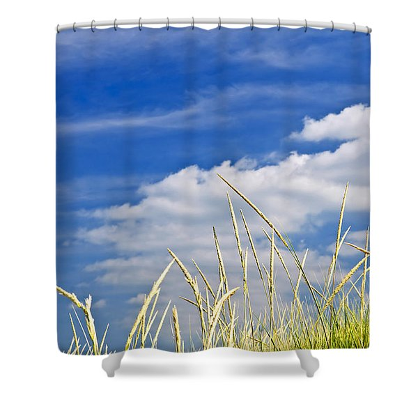 Tall grass on sand dunes Shower Curtain by Elena Elisseeva