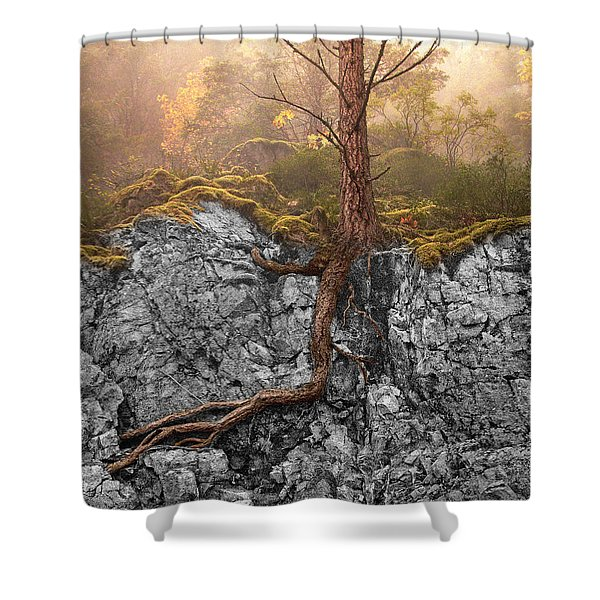 Taproot Shower Curtain by Mary Jo Allen