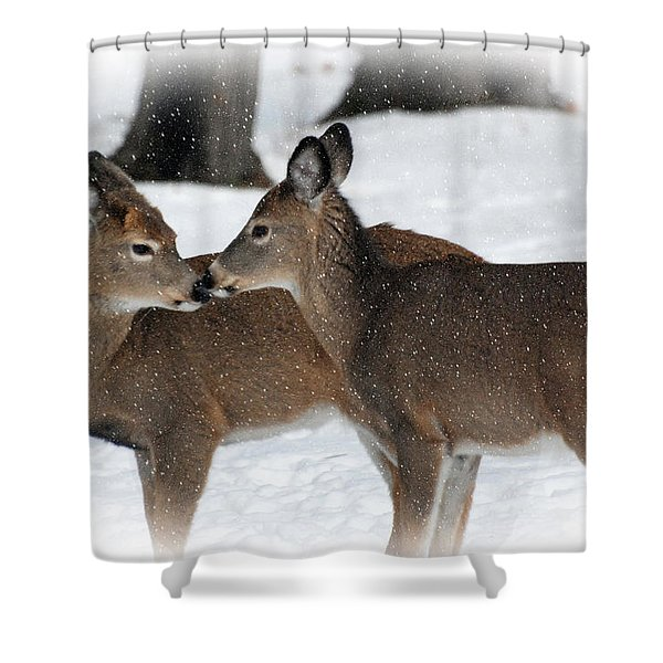 Tender Sentiment Shower Curtain by Christina Rollo