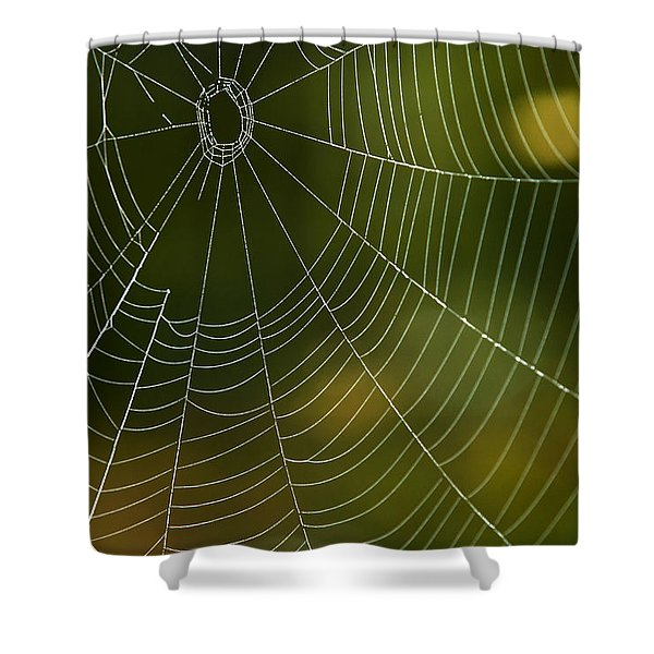 Tender Web Shower Curtain by Christina Rollo