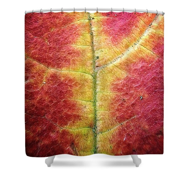 Textural Intricacy Shower Curtain by Natasha Marco