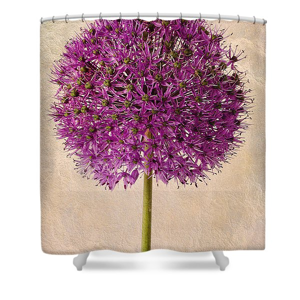 Textured Allium Shower Curtain by John Edwards