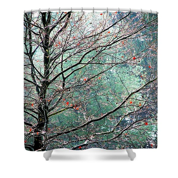 The Aura Of Trees Shower Curtain by Angela Davies