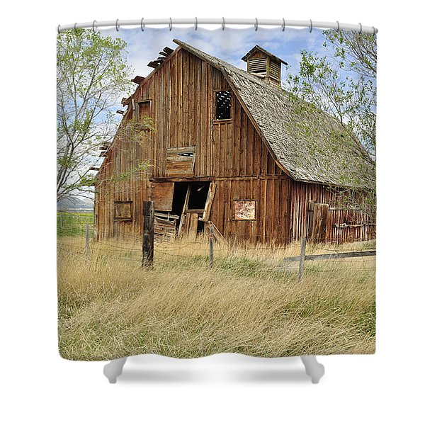 the Barn  Shower Curtain by Fran Riley