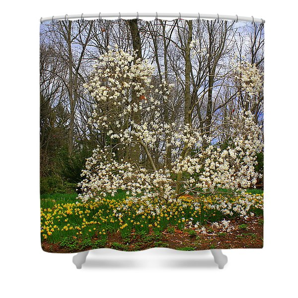 The Beauty Of Spring Shower Curtain by Photographic Art and Design by Dora Sofia Caputo