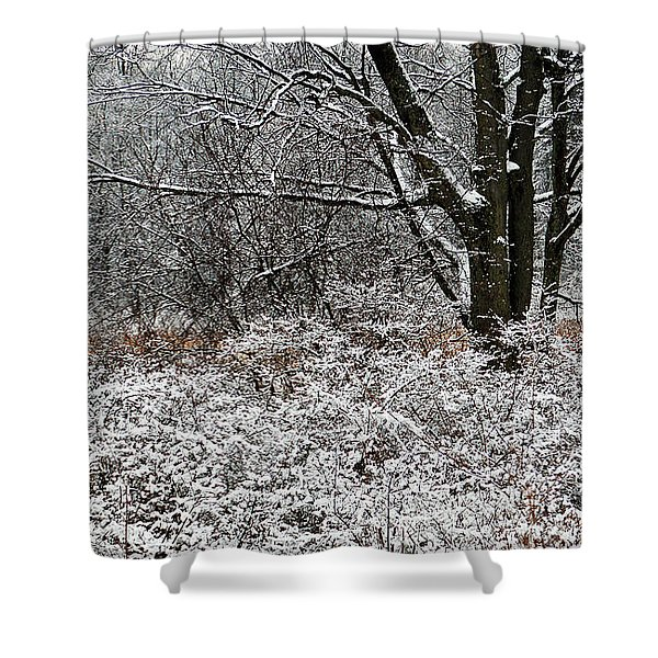 The Beauty of Winter Shower Curtain by Aimee L Maher Photography and Art