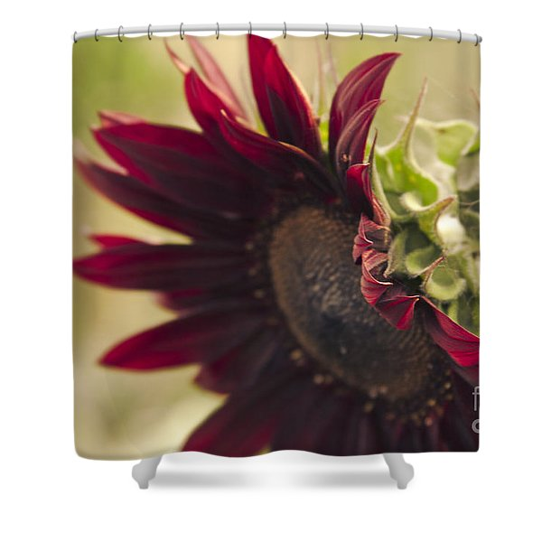The Child of Nature Shower Curtain by Sharon Mau