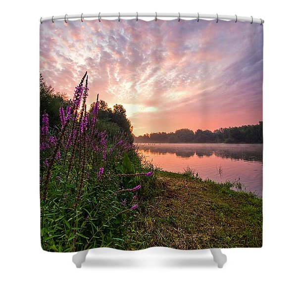 The Color Purple Shower Curtain by Davorin Mance