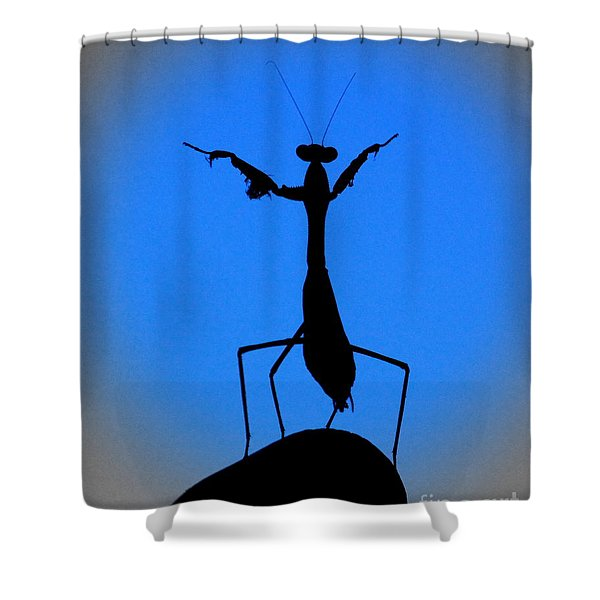 The Conductor Shower Curtain by Patrick Witz