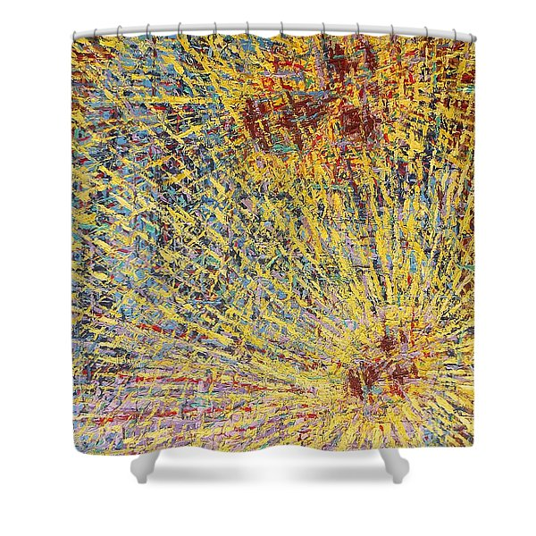 The First Christmas Shower Curtain by Patrick J Murphy