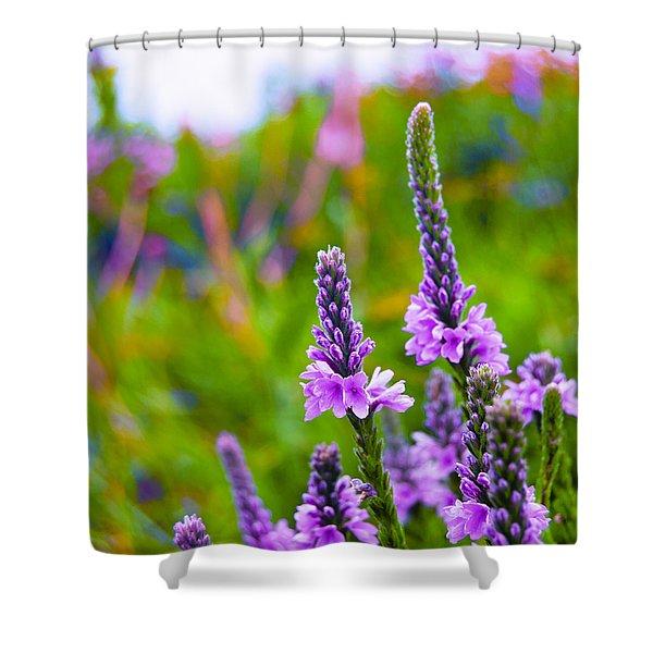 The Garden Palette Shower Curtain by Christi Kraft