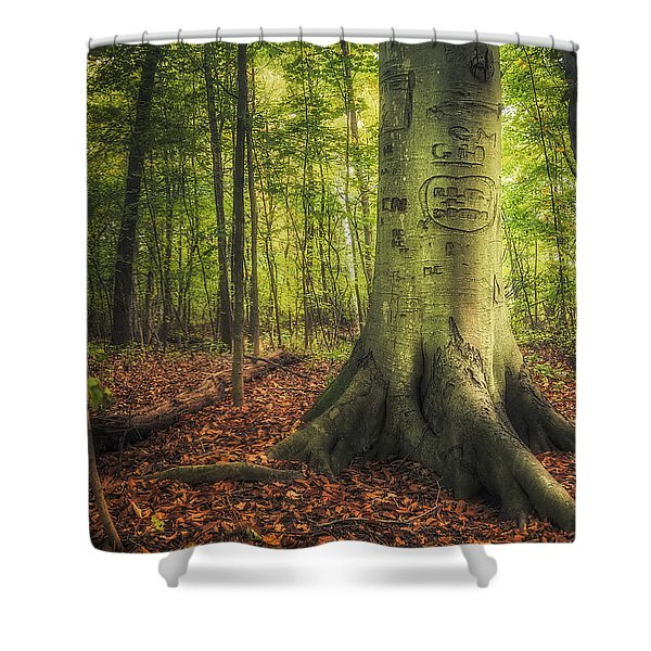 The Giving Tree Shower Curtain by Scott Norris