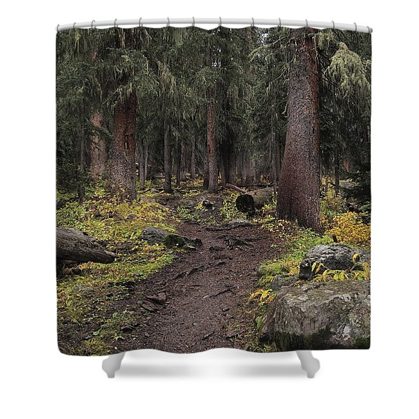 The High Forest Shower Curtain by Eric Glaser