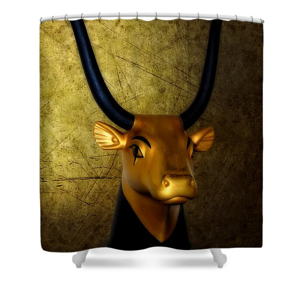 The Holy Cow Shower Curtain by Olga Hamilton