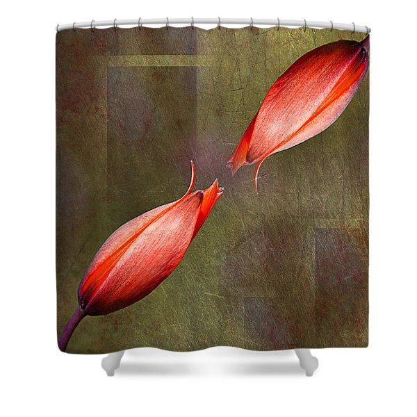 The Kiss Shower Curtain by Claudia Moeckel