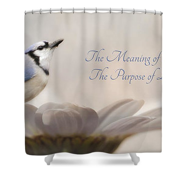 The Meaning Of Life Shower Curtain by Lori Deiter