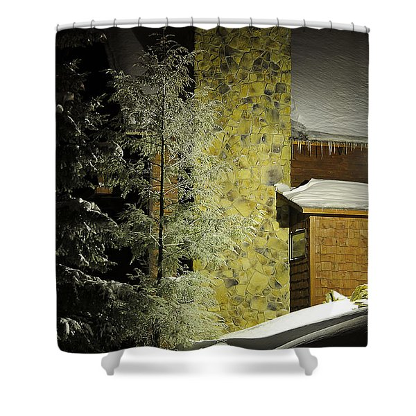 The Night Light Shower Curtain by Lois Bryan