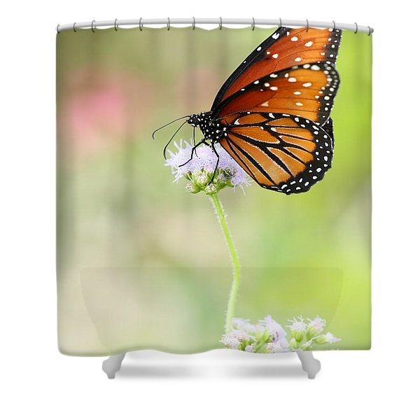 The Queen In Spring Shower Curtain by Sabrina L Ryan