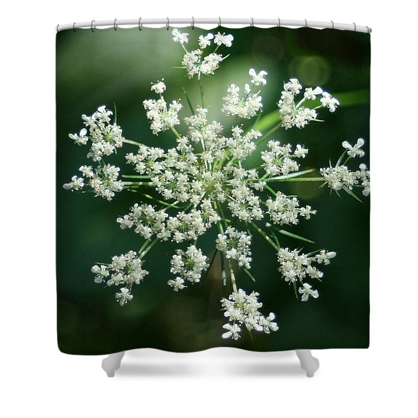 The Queen Of Lace Shower Curtain by Barbara S Nickerson