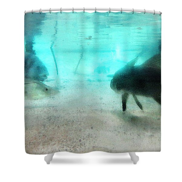 The Storyteller - A Fish Tale By Sharon Cummings Shower Curtain by Sharon Cummings