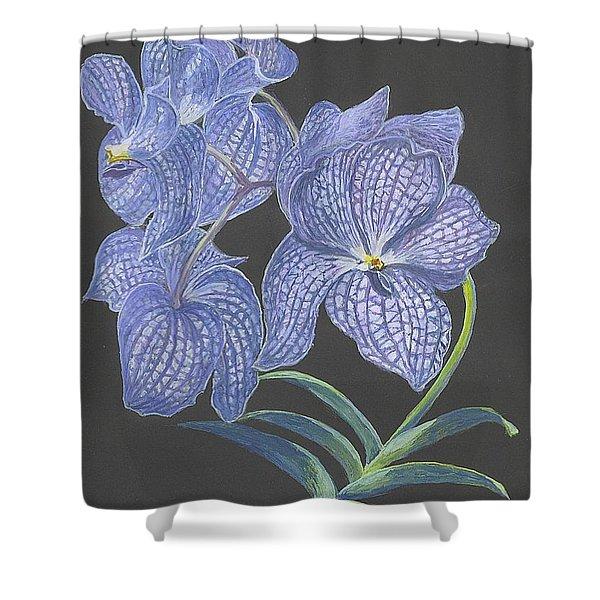 The Vanda Orchid Shower Curtain by Carol Wisniewski