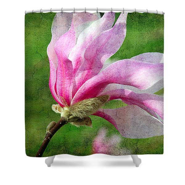 The Windblown Pink Magnolia - Flora - Tree - Spring - Garden Shower Curtain by Andee Design