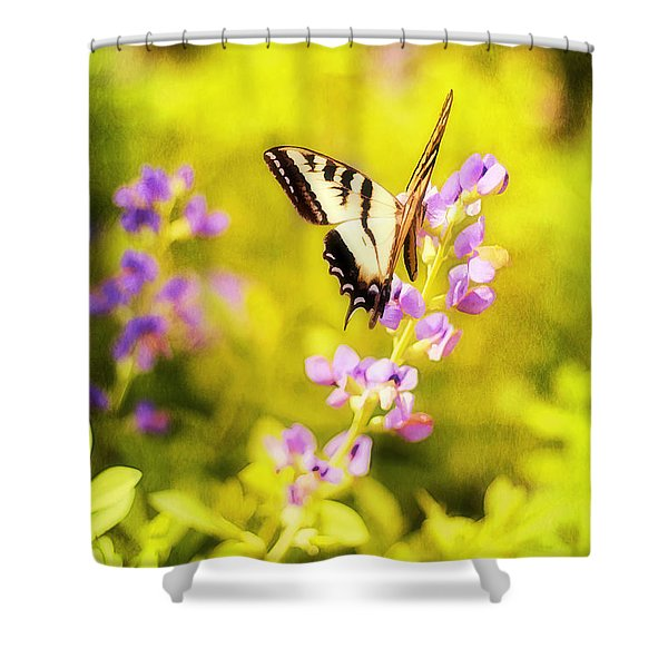 Those Summer Dreams Shower Curtain by Darren Fisher