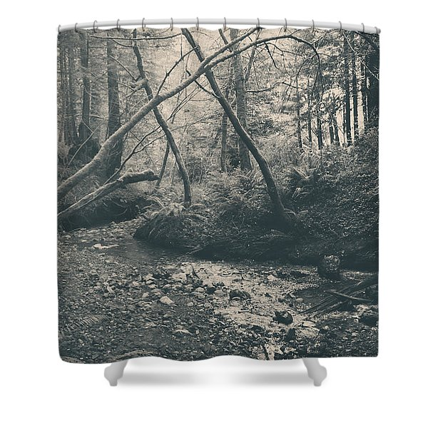 Through The Woods Shower Curtain by Laurie Search