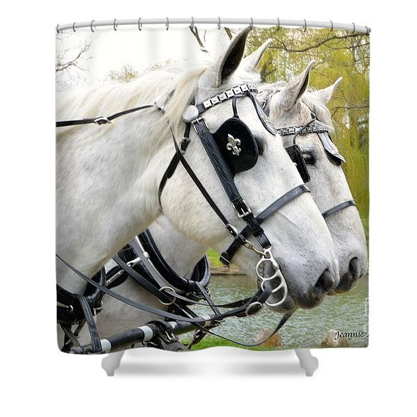 Tillie And Bruce #2 Shower Curtain by Jeannie Rhode Photography