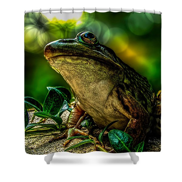 Time Spent With The Frog Shower Curtain by Bob Orsillo