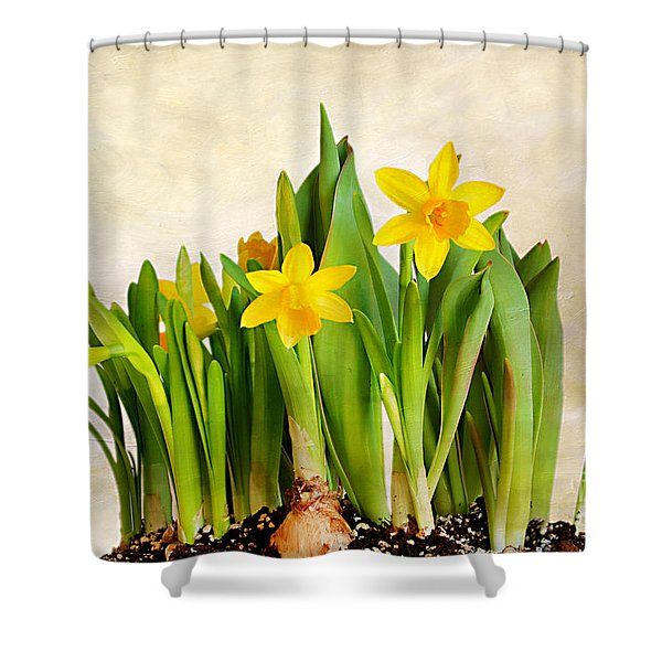 Tiny Dancers Shower Curtain by Darren Fisher