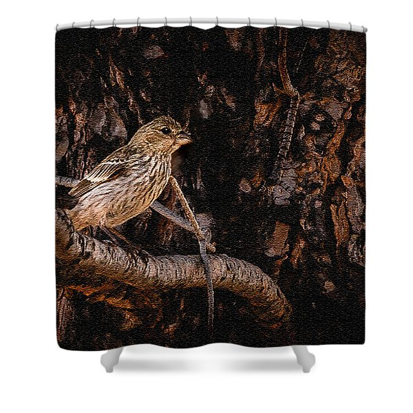 Tiny Sparrow Huge Tree Shower Curtain by Bob and Nadine Johnston