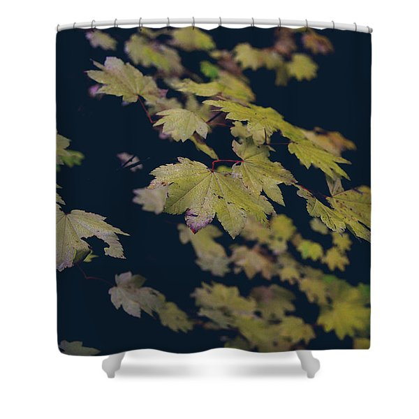 To Have You Near Shower Curtain by Laurie Search