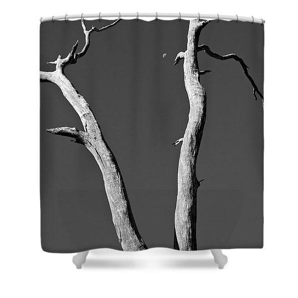 To the moon Shower Curtain by Steven Ralser