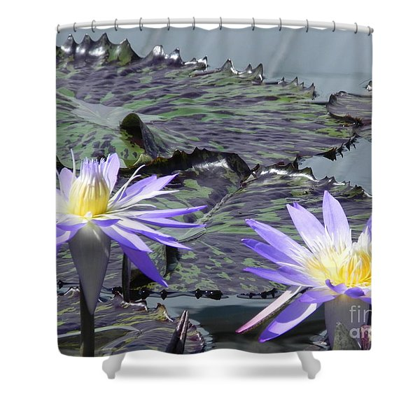 Together Is Beauty Shower Curtain by Chrisann Ellis