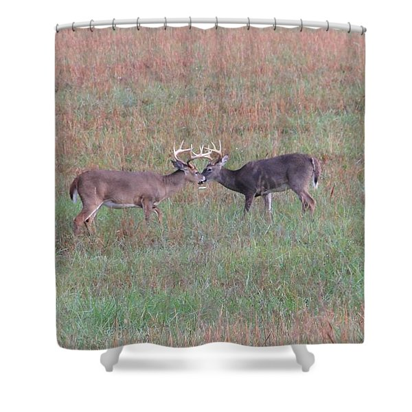 Touching Moment Shower Curtain by Dan Sproul