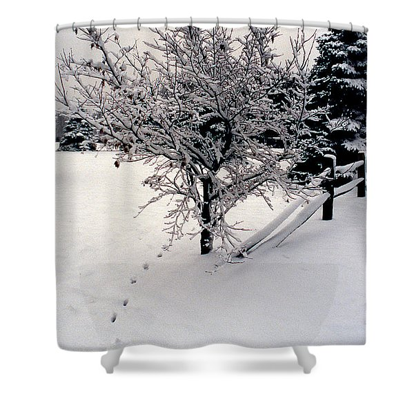 TRACKS Shower Curtain by Skip Willits